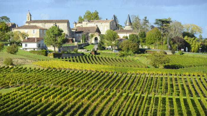 Bordeaux Wines – An Introduction